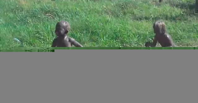 Дети играют в болоте