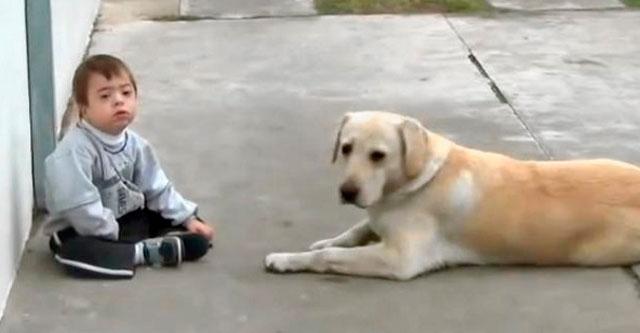 Лабрадор и мальчик с синдромом Дауна
